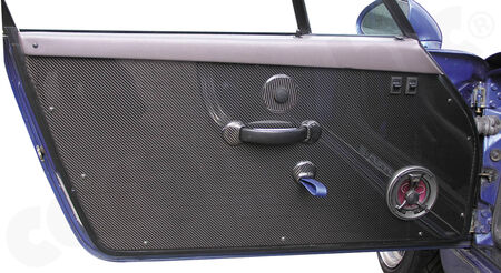 CARGRAPHIC Door Panel Pair RS - - Visual-Carbon<br>